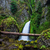 Wahclella Falls; Columbia River Gorge