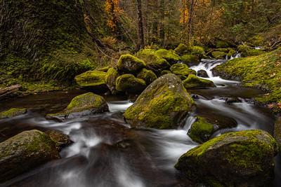 Mossy Creek