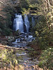13 January 2013.  Meigs Creek Falls, Great Smoky Mountain National Park.
