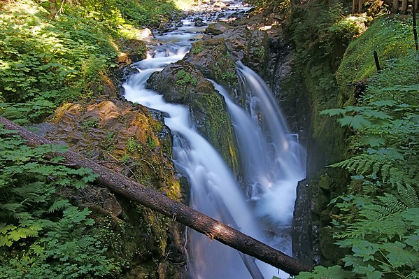 Waterfall Olympic National Park