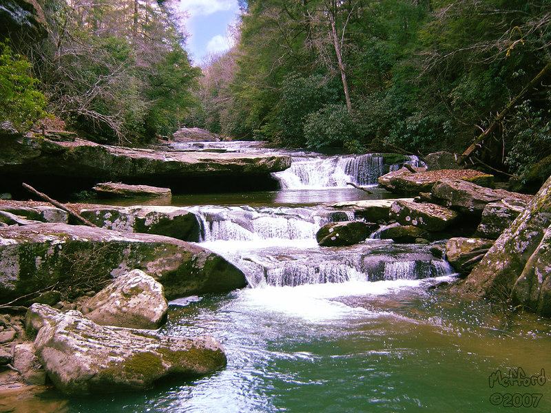 19 January 2006.  Bark Camp Creek, Whitley County KY.