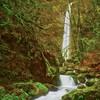Elowah Falls - Columbia River Gorge - 180