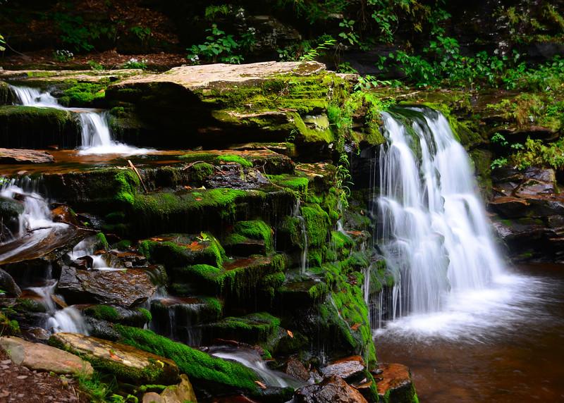 Cayuga Falls<br /> Ricketts Glen State Park<br /> 090113