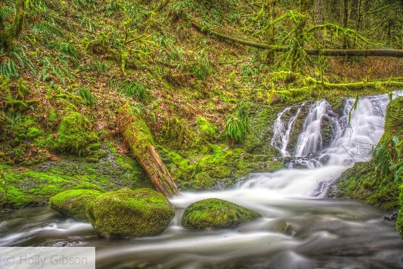 Stream above McCord Falls - 171