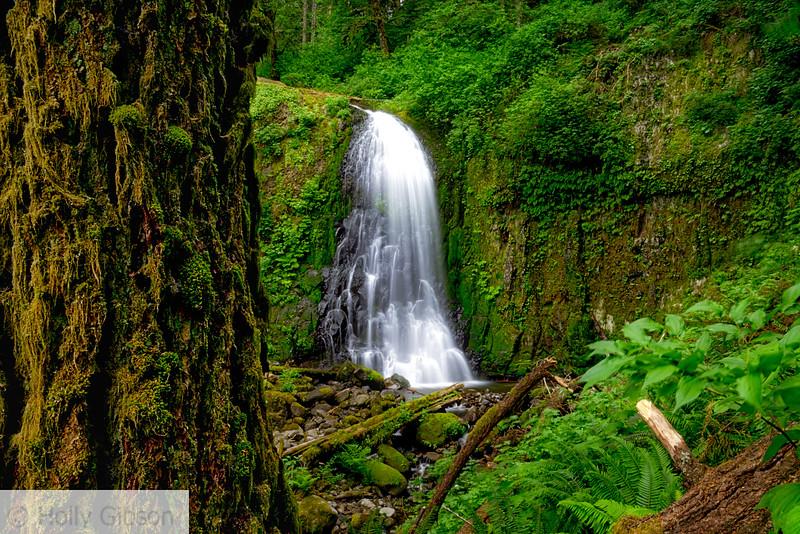 Upper McCord Creek - Columbia River Gorge