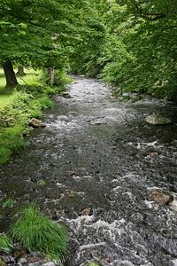 Ringwood State Park stream