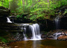 RB Ricketts Falls<br /> Ricketts Glen State Park<br /> 083113
