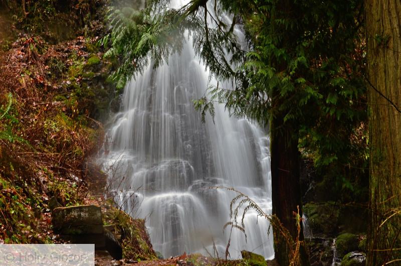 Fairy Falls - Columbia River Gorge - 30