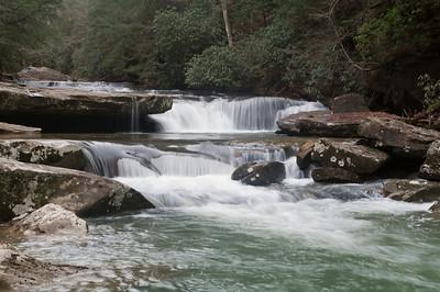 Bark Creek