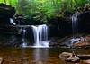 R B Ricketts Falls<br /> Ricketts Glen State Park<br /> 083113