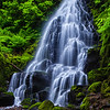 Fairy Falls; Columbia River Gorge