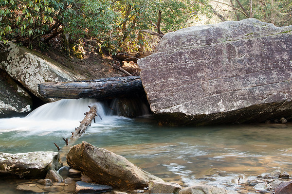 Bark Creek. Daniel Boone National Forest.