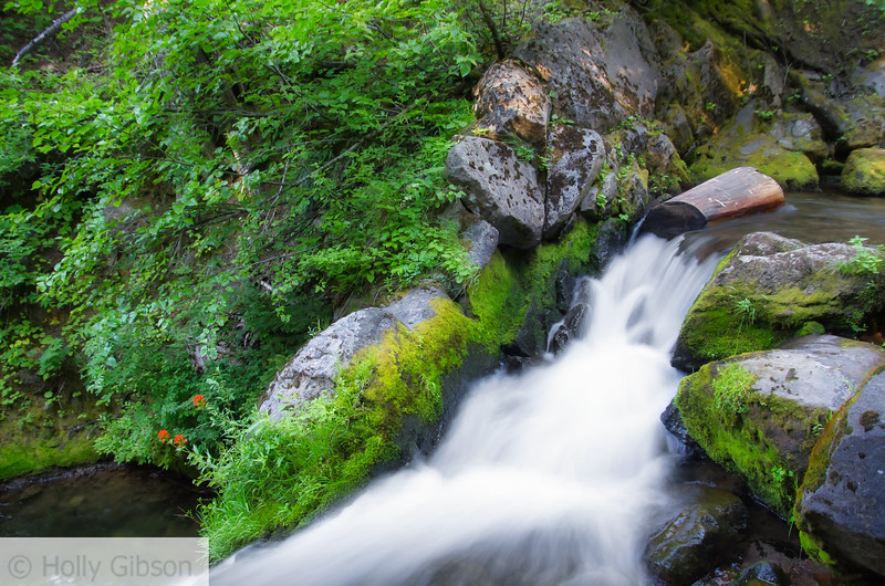 Below Sahalie Falls