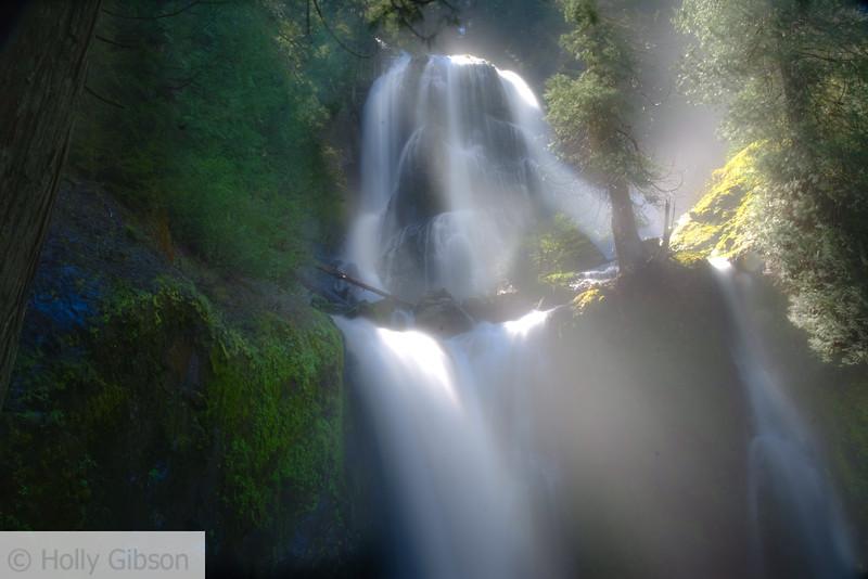 Falls Creek Falls - Gifford Pinchot Forest
