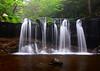 Oneida Falls<br /> Ricketts Glen State Park<br /> 083113