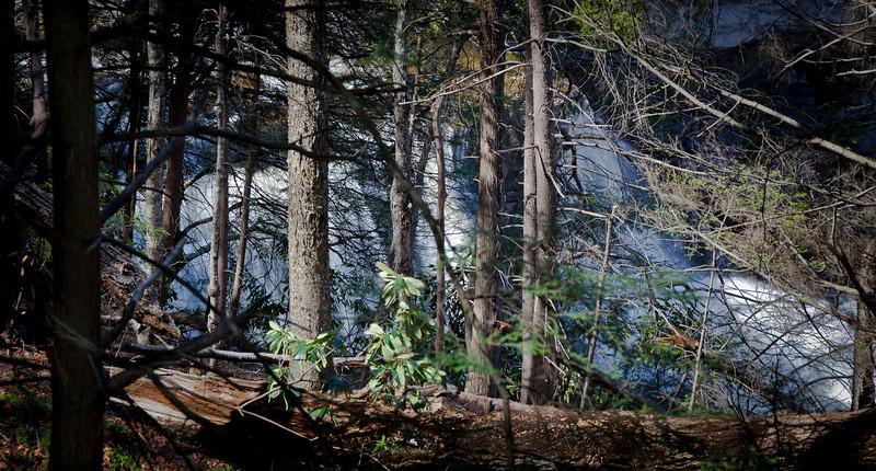 Blackwater Falls, WV<br />  (IMG_7908)