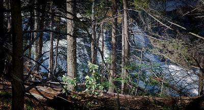 Blackwater Falls, WV  (IMG_7908)