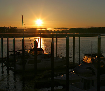 River Sunrise (49740776)