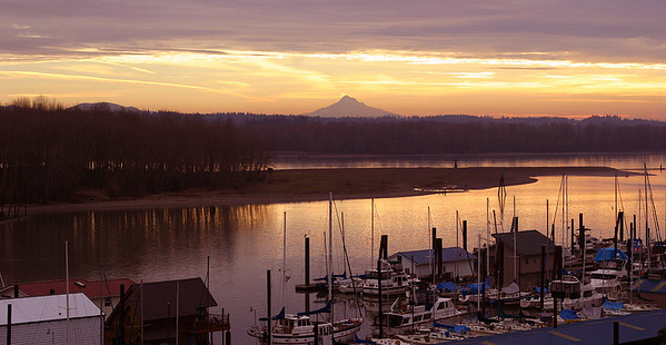 Columbia River Morning (38960596)