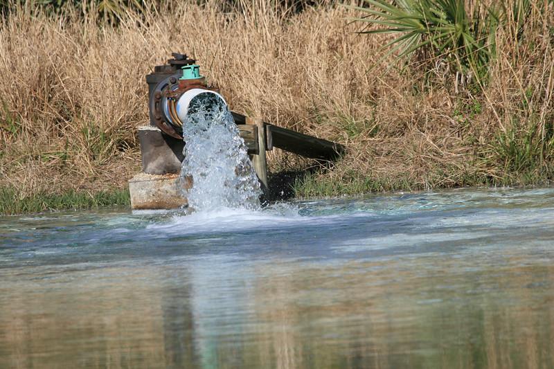 Artisian well pond_SS7193