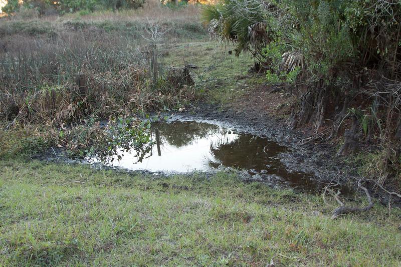 Livestock waterhole_SS8176