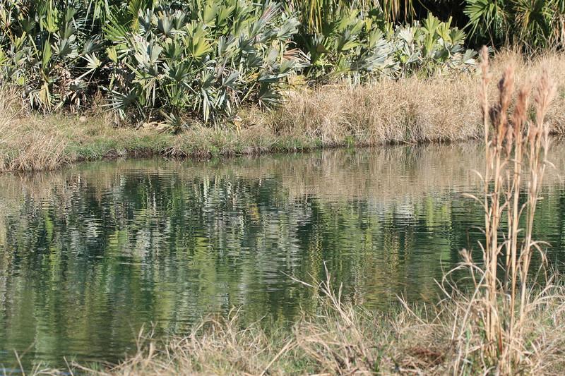 Ranch pond_SS7195