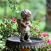 Birdbath_SS8095