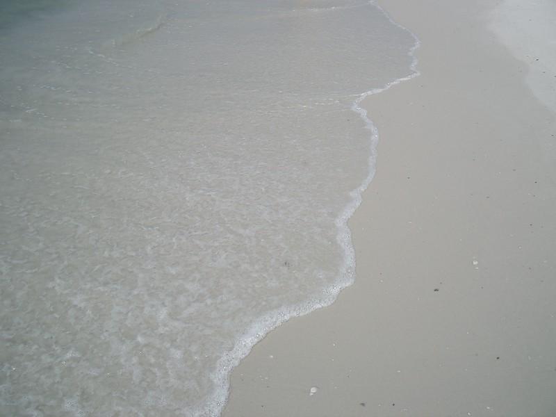 Florida beach on the Gulf coast where the surf and sand meet.