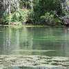 Clear Spring in Florida_SS4646