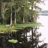 Riverscape_SS9368
