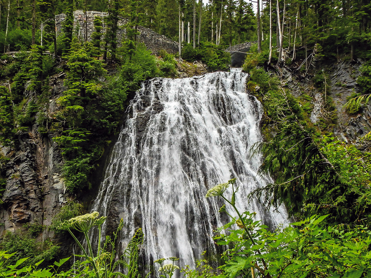 Narada Falls Mt Rainier