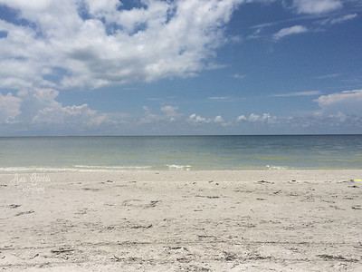 Beautiful Day. Beaches of Sanibel Island, Florida