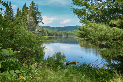 Northern Maine meadow stream