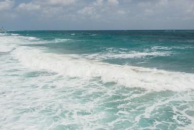 Celebrating World Oceans Day