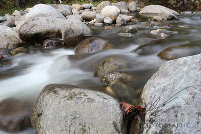 Quiet Mountain Stream