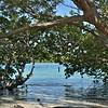 South Florida Lagoon