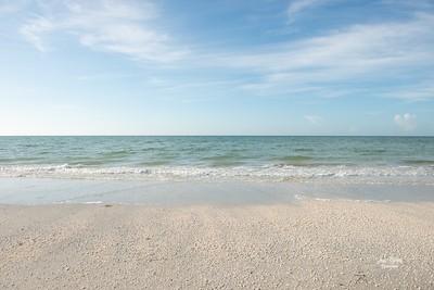 She sells seashells by the seashore.  Of course no live shells. 🐚