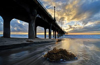 Sunset Kelp, Manhattan Beach Pier