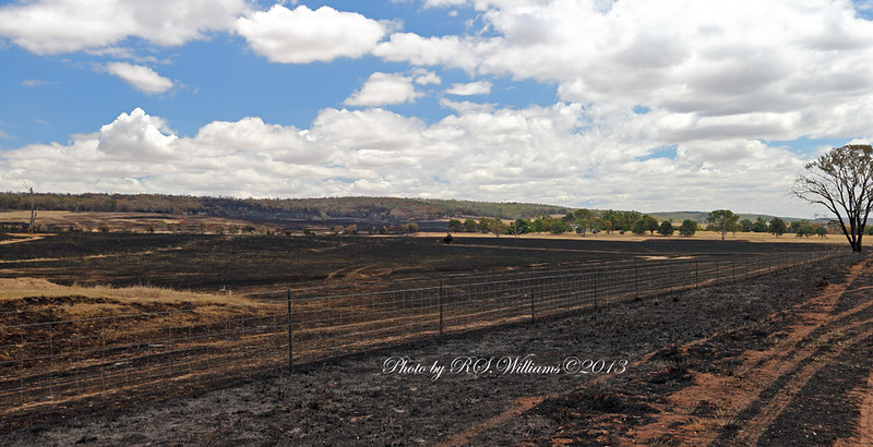 """The northern flank of the fire near the property """"Yallambee""""."""