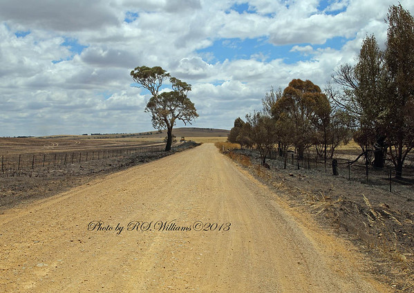 The Campellfield Road, Boorowa, where the fire was finally stopped.