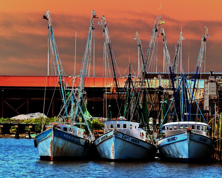 Georgetown Fleet