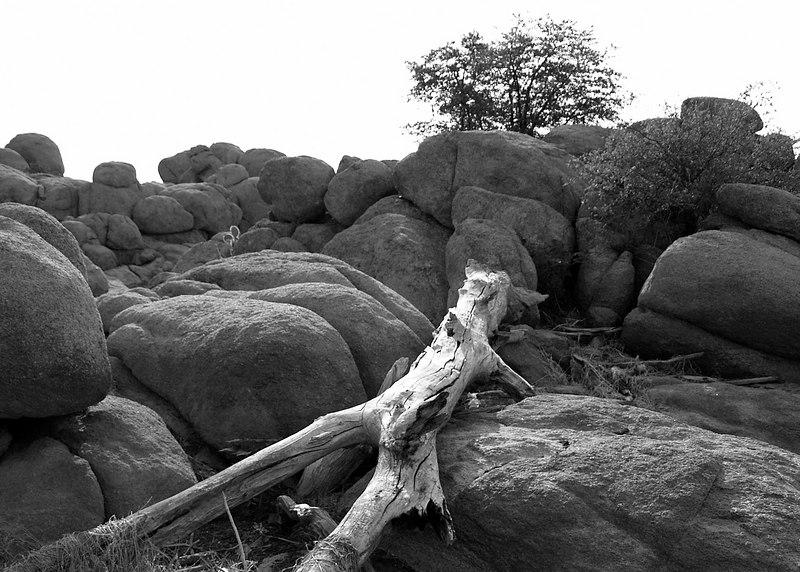 Wishbone Rock