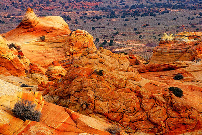 cbwp28: Phyllis's image of jumbled sandstone formations in the Cottonwood area, South Coyote Buttes