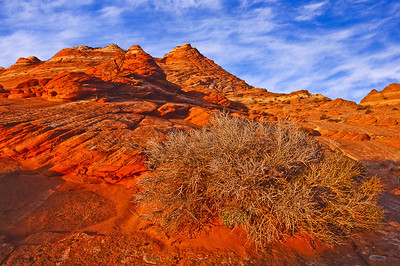 Early warm light rakes across the sandstone of the North Coyote Buttes