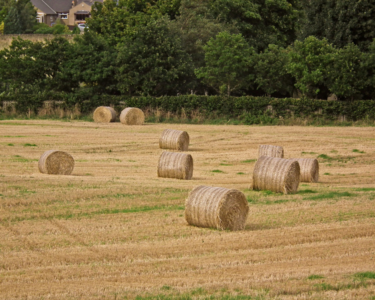 Hay baling in Co. Durham