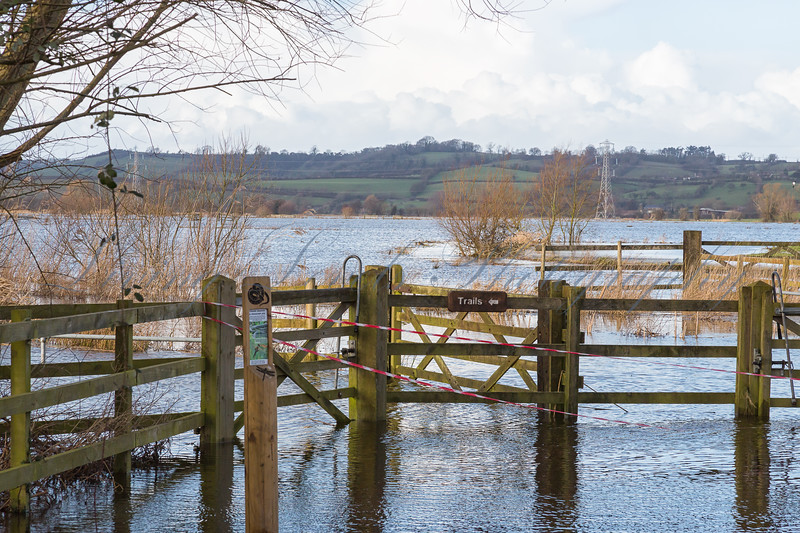 Floods close Greylake Nature reserve on the Somerset Levels