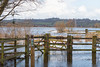 Floods close Greylake Nature reserve on the Somerset Levels