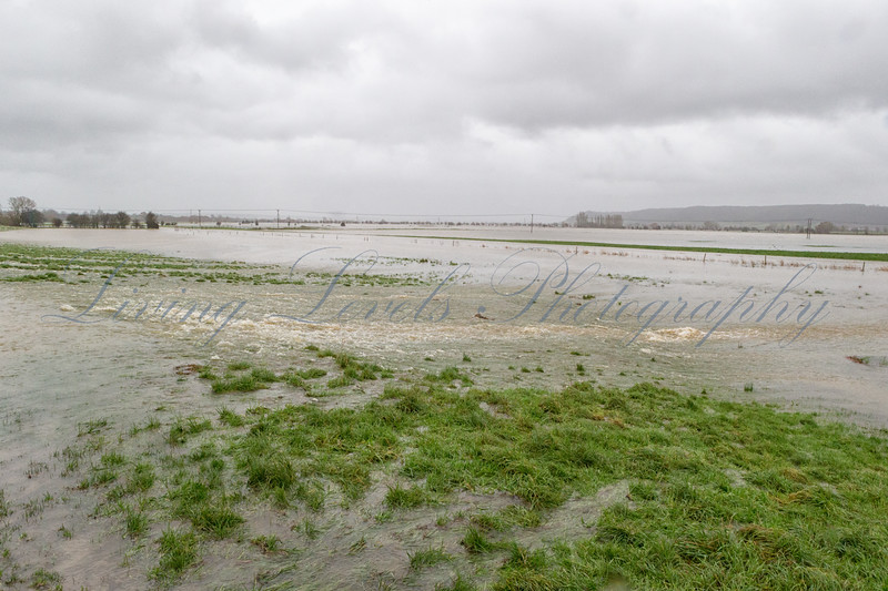 River Parrett overflowing its banks onto Aller Moor at Stathe, near Burrowbridge on the Somerset Levels, with the flood growing.