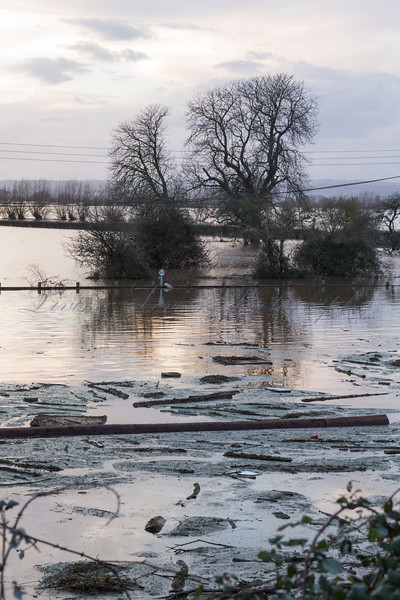 The South of Burrowbridge is surrounded by flood water