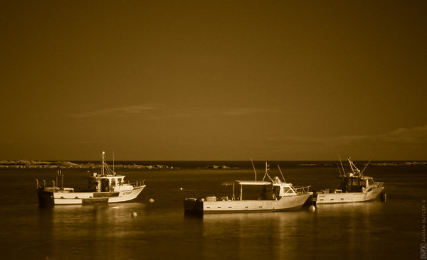 I shot this Image of the boats in Island Bay with my hoya R-72 infra red filter and then tweaked the output in Adobe Lightroom.